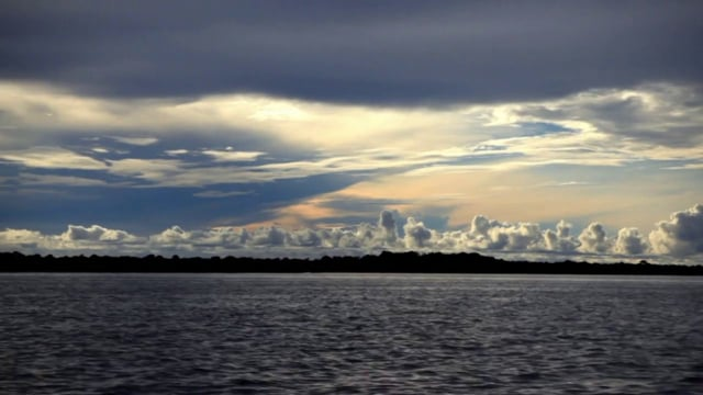 Novas Ideias para o Futuro da Amazônia
