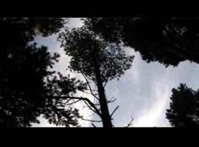 Simon Beckett über «Leichenblässe»