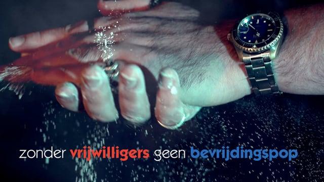 Vrijwilligers Bevrijdingspop Haarlem