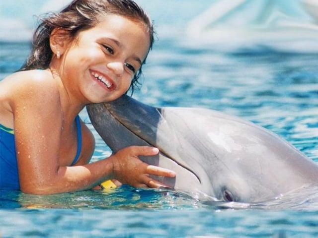 Nado con delfines en Cancun - Isla mujeres (Dolphin Encounter Program)