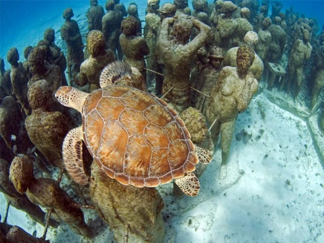 Dive at Cancun underwater museum (MUSA)