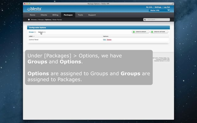 Blesta v3.1: Configurable Options