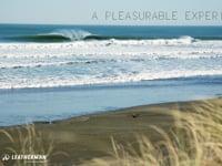 A Pleasurable Experience