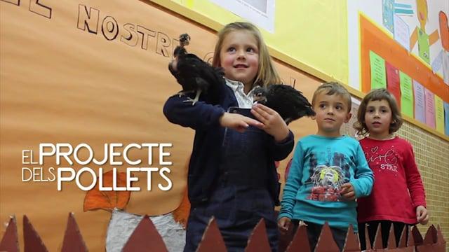 Els Pollets - Documental