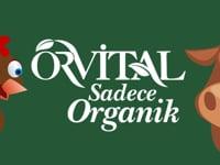 Orvital Ev