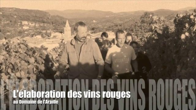 L'élaboration des vins rouges au Domaine de l'Arjolle