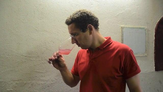L'élaboration des vins rosés au Domaine de l'Arjolle