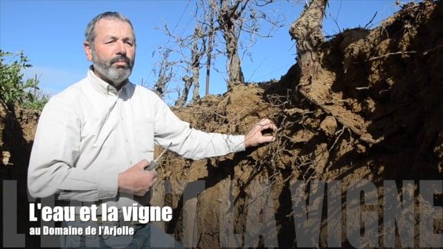 La disponibilité de l'eau pour la vigne - Domaine de l'Arjolle