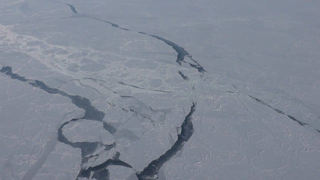 Measuring sea ice from space, the air and on the ground