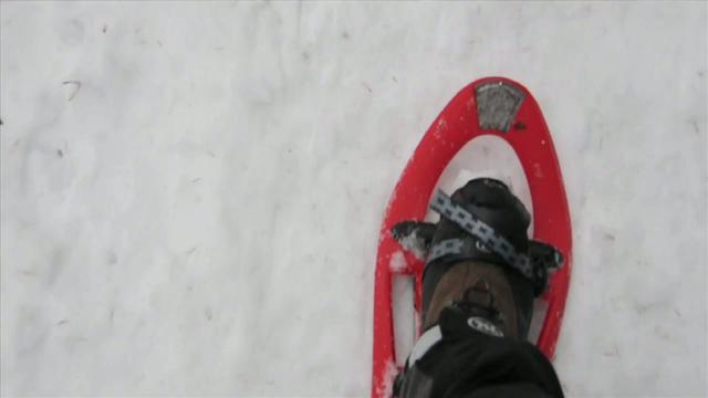 Sneeuwschoen-lopen