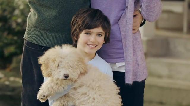 PuppySwap (Humane Society PSA)