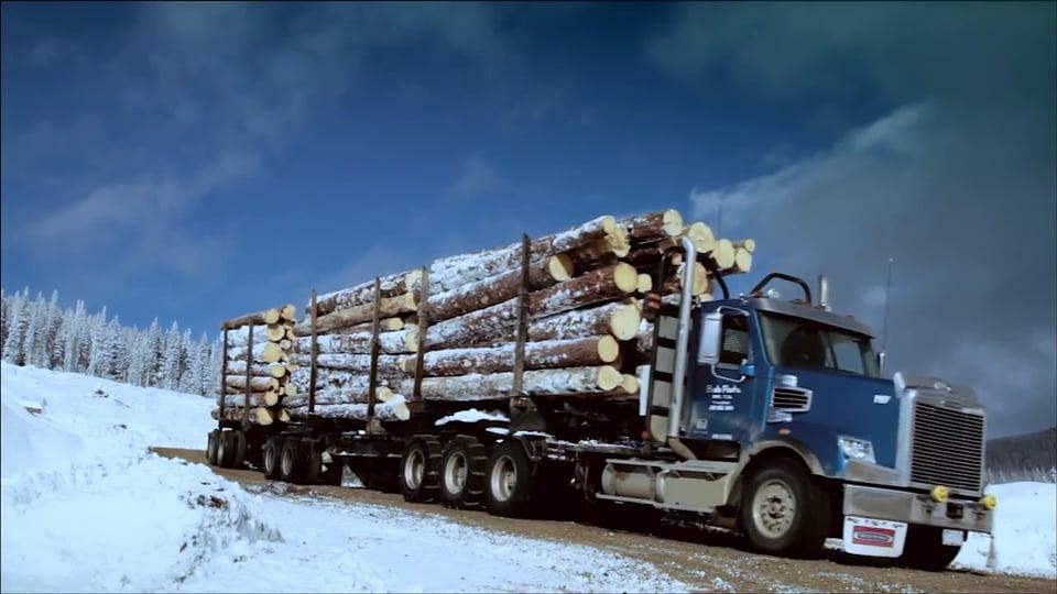 Freightliner - Arctic