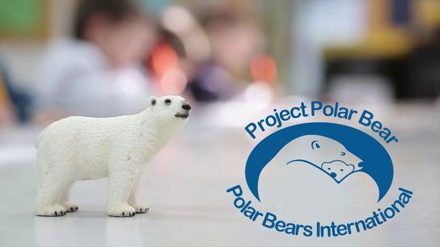 Polar Bear Project (EI)