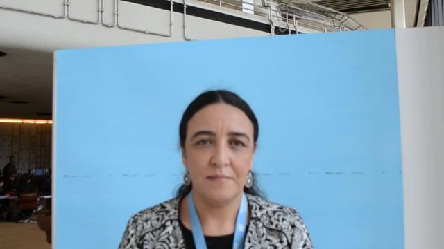 حورية اسلامي، عضو المجلس الوطني لحقوق الإنسان