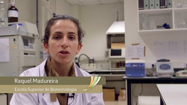 Raquel Madureira - Nanopartículas