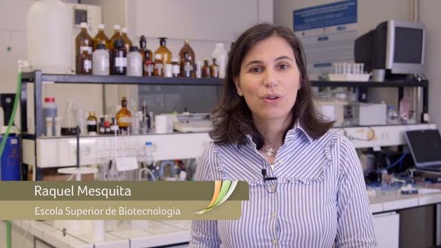 Raquel Mesquita - Automatização de análise química para monitorização de águas