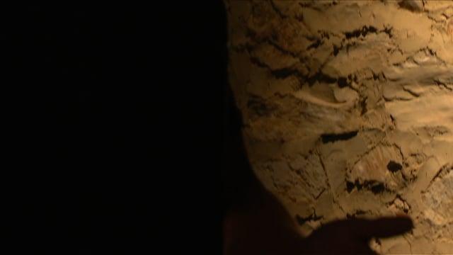 ANIMA, film excerpt