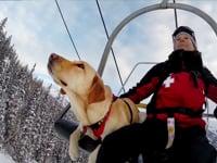 Telluride Avalanche Dogs •100% GoPro edit