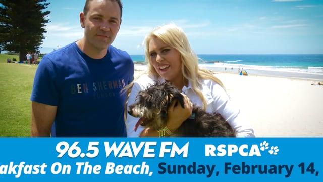 Wave FM BOTB GBPWFMTVC03 Version 3E+