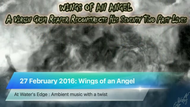 At Water's Edge, 27 February 2016: Wings of an Angel