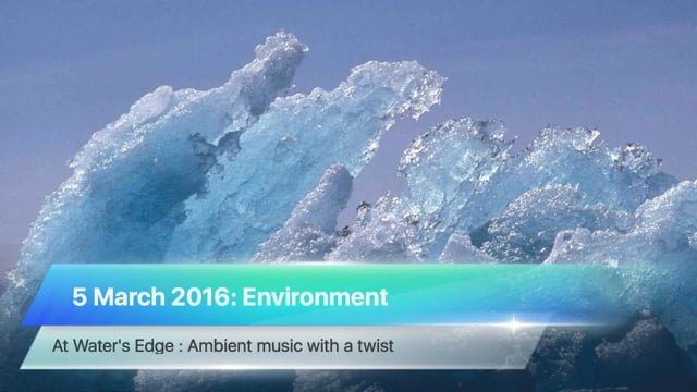 At Water's Edge, 5 March 2016: Environment