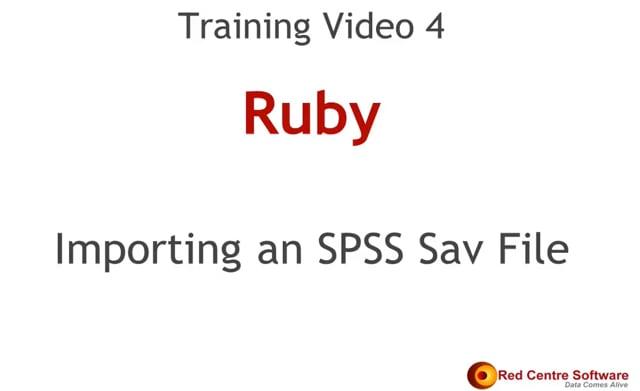 4. Importing an SPSS Sav File