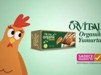 Orvital Organik Yumurta