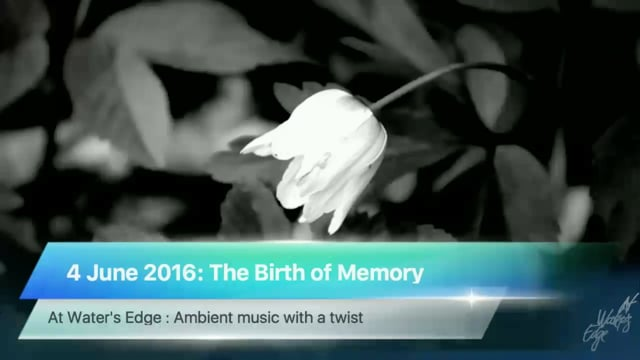 The Birth of Memory