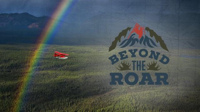 Beyond The Roar