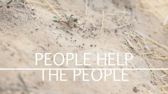 Vídeo dansa - People help the people