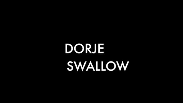 Showreel for Dorje Michael Swallow