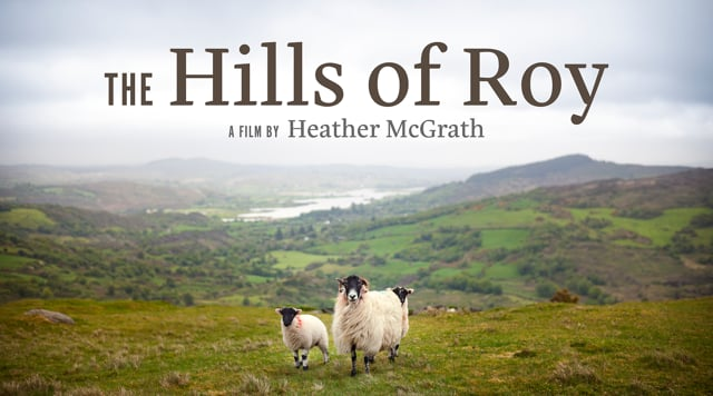 Hills Of Roy