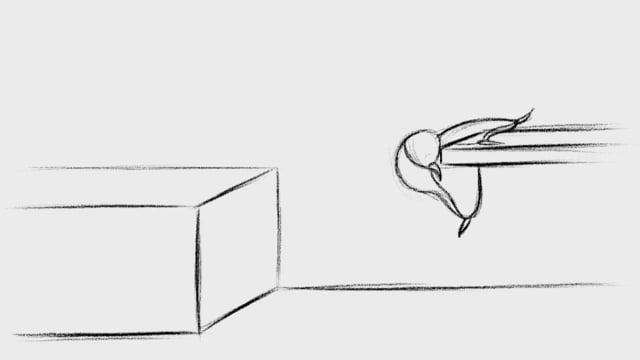 jump/climb