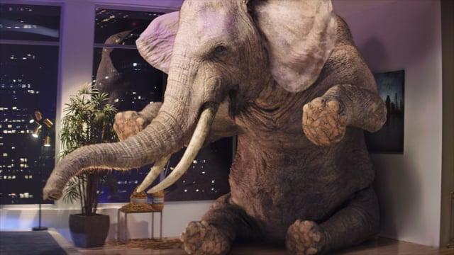 GEICO Elephant