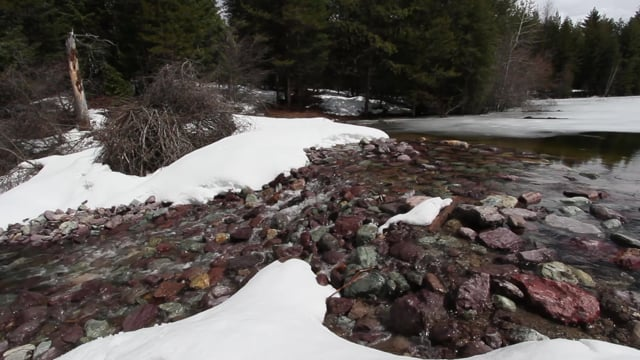 New Dam at Home Pond: First Spring Runoff