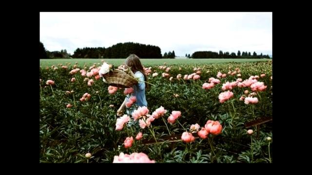 Dana Tynan – Beauty Reel