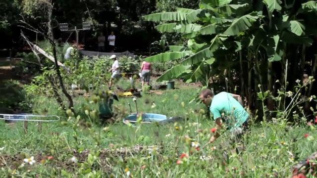 CAPITAL NATURAL # 35 :: agricultura urbana
