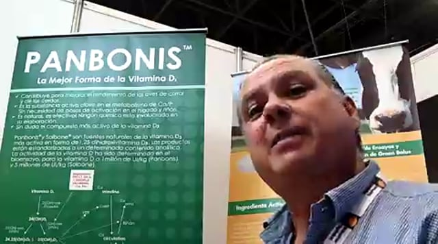 Diferencias entre la vitamina D3 de origen natural y otras fuentes