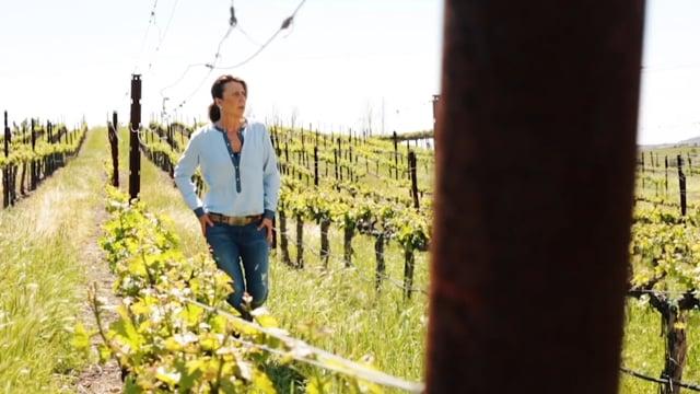 Women Behind The Wine - Gina Gallo