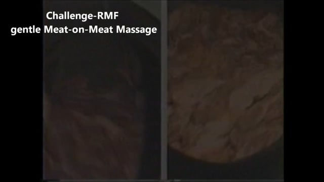Challenge-RMF Us vs. Them