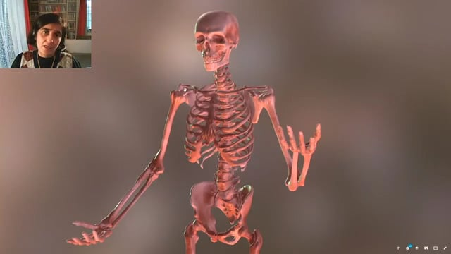 Skeletal System - Joints in our Body