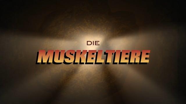 Die MuskeLtiere