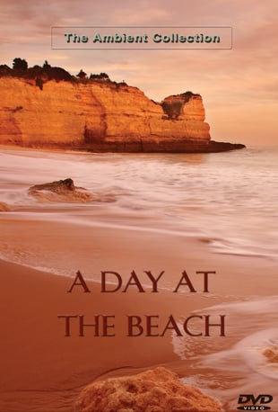 A day at the beach movie