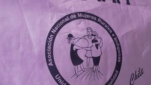 El II Congreso Nacional de Anamuri en Chile