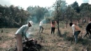BELLA TROPICA RESEARCH VIDEOS