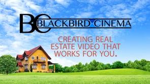 Blackbird Cinema Real Estate