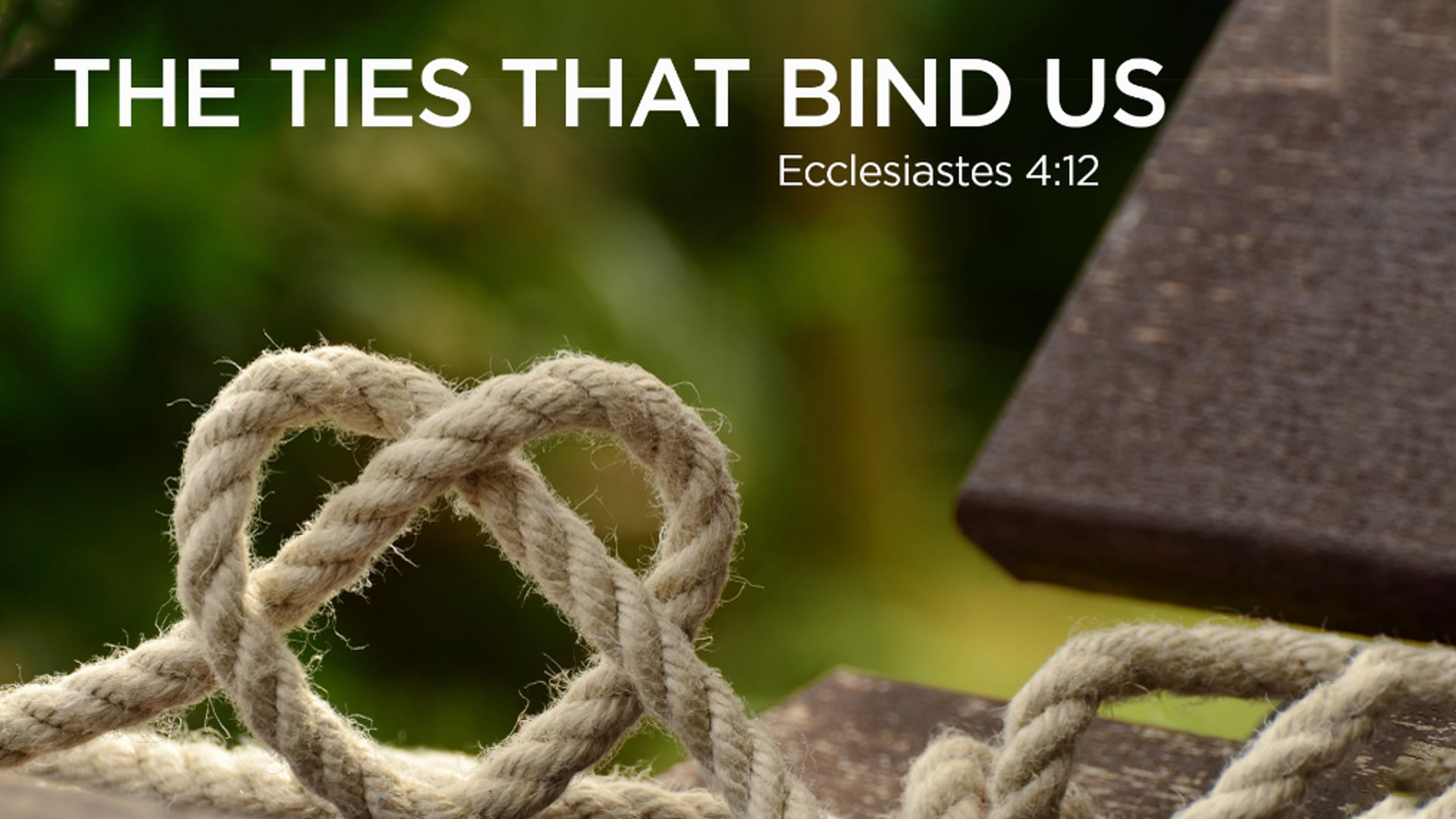 The Ties That Bind Us