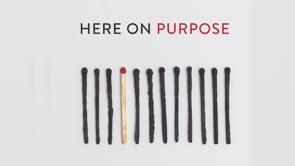 Here on Purpose
