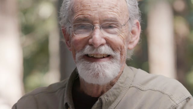 Bill Verplank Ph.D.