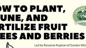 How To Plant, Prune & Feed Fruit Trees & Berries